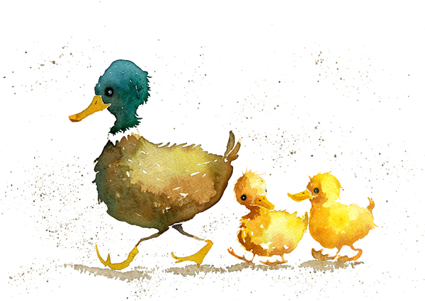 Family of watercolour ducks